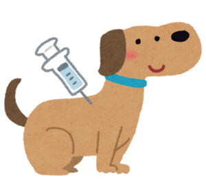 飼い犬の狂犬病のワクチンを打ちに市役所へ行った