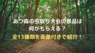 【画像付き】あつ森の虫取り大会の景品は何がもらえる?全13種類を紹介!